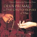 CD Deva Premal and The Gyuto Monks of Tibet - Tibetan Mantrs for Turbulent Times / Meditative, Mantras (Jewel Case)